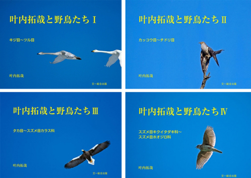 kanouchi01.jpg