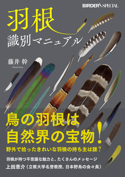 羽根識別マニュアル - The bird's feather identification manual
