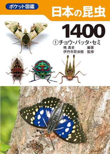 8302-7LS.jpg