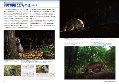 自然写真の教科書2_4.jpg