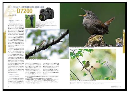 野鳥撮影2.png