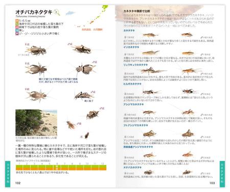 鳴く虫2.png